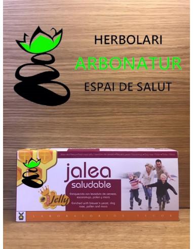JALEA SALUDABLE - TEGOR 20 viales.