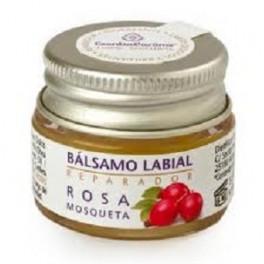 BALSAMO LABIAL REPARADOR ROSA MOSQUETA  5 Gr.