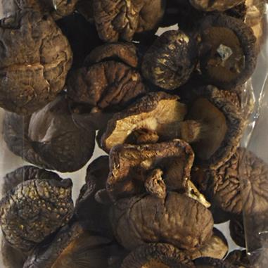 SHIITAKE (lentinus edodes)  INFRACMA 50 Gr.
